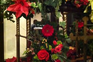 Christmas flowers 2014