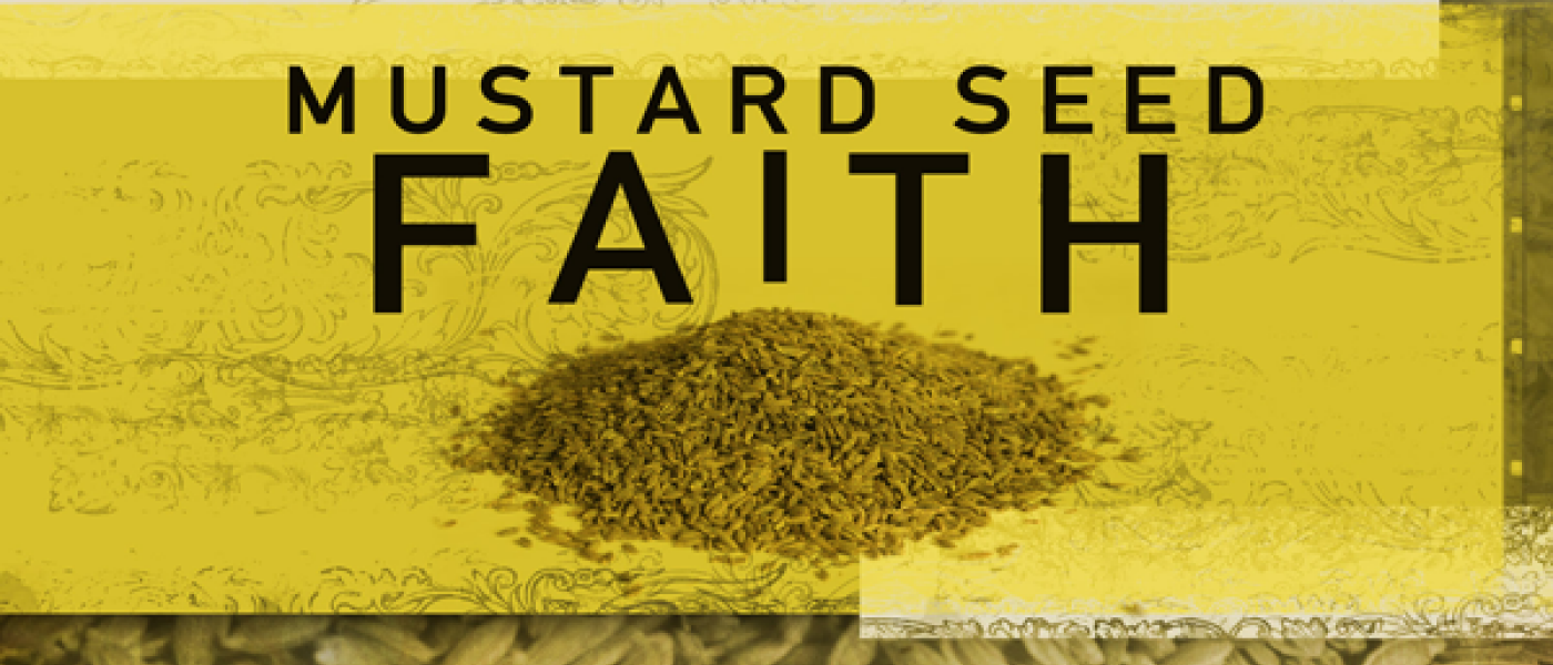 Mustard Seed: Immigrant Relief