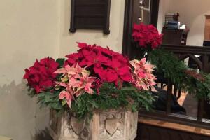 Christmas 2018 flowers font